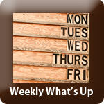 Tp-weekly whats up